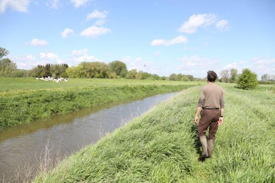 Foto van Natuur en Bos zoekt 3 straffe Natuurinspecteurs