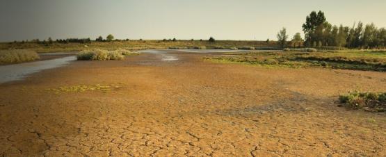 Foto van Natuurbeheer en klimaat