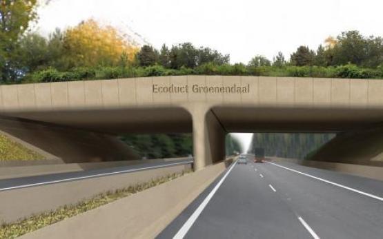 Foto van Ecoduct Groenendaal bestaat één jaar