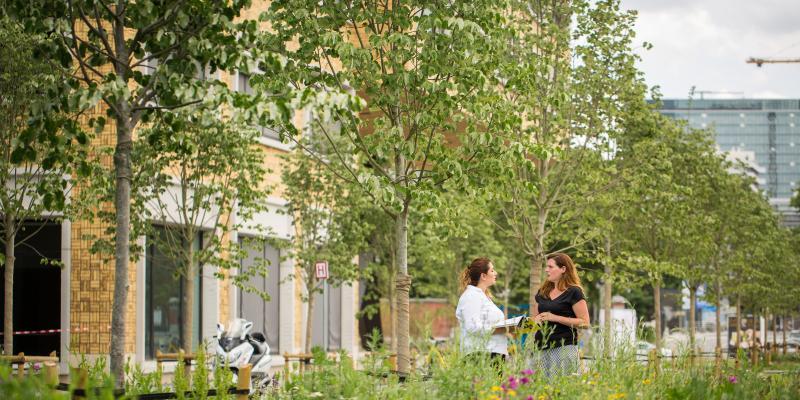 Natuurinvest zoekt administratief medewerker opleidingscentrum