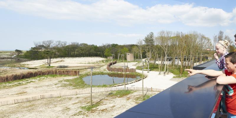 Vacature Verantwoordelijke productontwikkeling en doelgroepenwerking Zwin Natuur Park