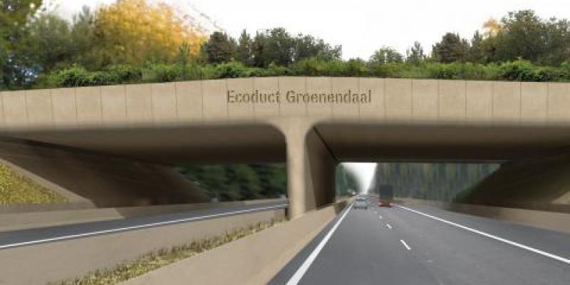 Ecoduct Groenendaal bestaat één jaar