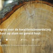 Nieuw: Hulpgids voor de kwaliteitsbeoordeling van hout op stam en geveld hout
